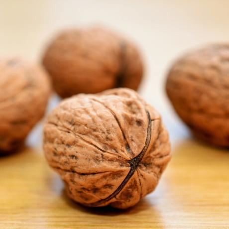 walnuts for hair loss