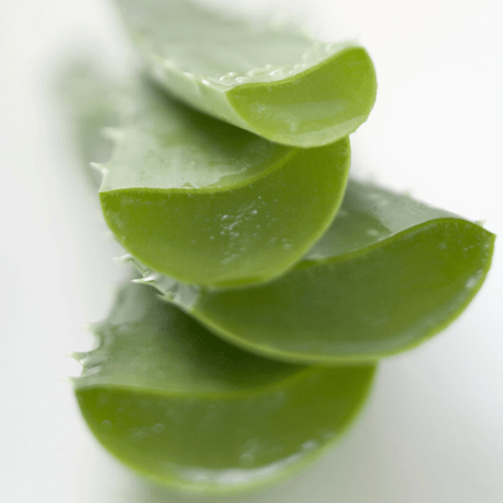 herbal remedies for mens hair growth aloe vera