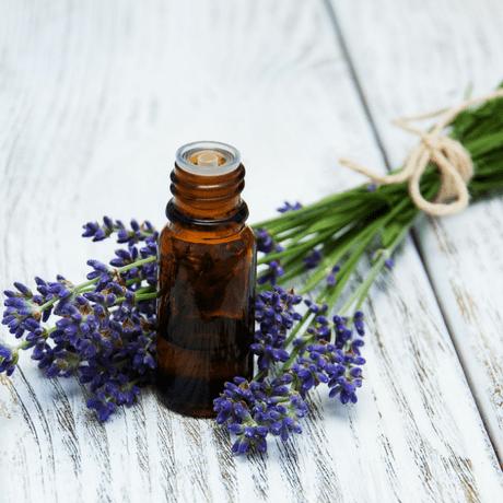 lavender oil herbal remedies for mens hair growth