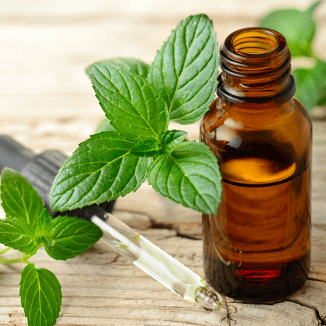 herbal remedies for mens hair growth peppermint oil