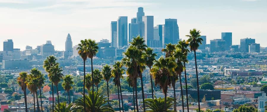Los Angeles Scalp Micropigmentation Clinic